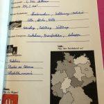 portfolio-d-löwen-3